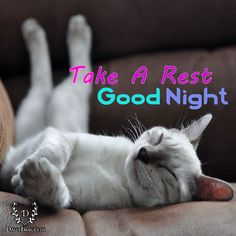 Take A Rest, Good Night #goodnight #gn #quotes