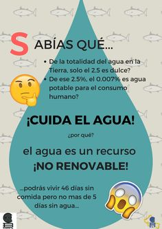 Cartel informativo sobre agua Spanish Teacher, Spanish Class, Teaching Spanish, Save The Planet, Our Planet, Cute Unicorn, France, Slow Food, Classroom
