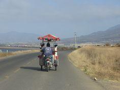 On the road in Punta Banda #Ensenada