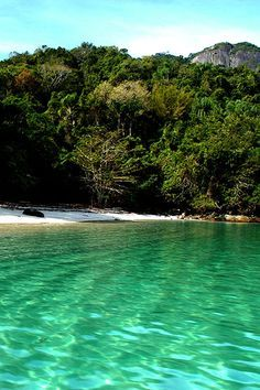 Praia do Sena, Grumixama, Ilha Grande, Rio de Janeiro, Brasil...
