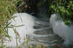 Vida Eco Organica (eco life): Principales Contaminantes en el Agua.