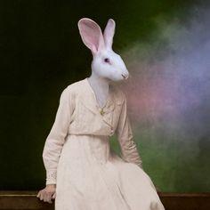 The Delicate Lady  Martine Roch