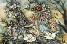 Shop Categories - Jody Bergsma - efairies.com