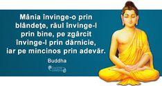 Citat Buddha Buddha, Motivational Quotes, Inspirational Quotes, Nicu, Dalai Lama, True Words, Spiritual Quotes, Kids And Parenting, Motto