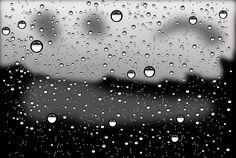 rain drops - Google Search