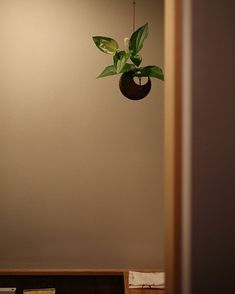 新しい家には飾る場所をたくさんつくってもらって飾る楽しみを覚えました というご感想を頂いたのは昭和ガラスの家 . 工作が大好きなお子さんの作品や頂き物のお花以前の家では飾るスペースも気持ちの余裕も無かったそうですがたくさん収納を設けて物の定位置を作ったことで飾るスペースをしっかり確保できるようになりました . トイレに設けた花器は照明器具でも使用したAtelier Key-menの月形の花器 この家に合うだろうなとオススメしたところとても気に入ってくださったようです ちょっと庭の花をいける そんな日常が楽しくなる住まいになりました