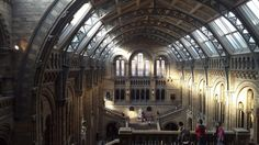 Forgot to tweet this pic I took from the Natural History Museum last week! What glorious light!! @NHM_London