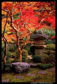 Garden of Enkoji temple, Kyoto@Frantisek Staud