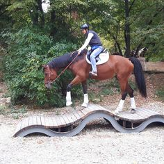 Extreme Trail in Österreich - Extreme Trail Park Sommerein Equestrian Stables, Horse Stables, Horse Farms, Paddock Trail, Horse Paddock, Extreme Trail, Aqha Western Pleasure, Horse Training, Training Tips