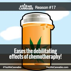 Eases the debilitating effects of chemotherapy! - http://ywc.ec/why17  #YesWeCannabis