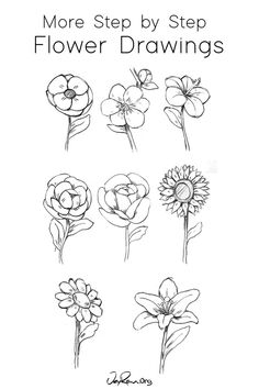 How to Draw a Hibiscus : Step by Step for Beginners — JeyRam : Art Tulip Drawing, Vine Drawing, Lilies Drawing, Leaf Drawing, Drawing Pin, Drawing Flowers, Easy Flower Drawings, Flower Sketches, Anime Drawings Sketches