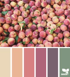 Fresh Hues - http://www.design-seeds.com/edible-hues/fresh-hues-7