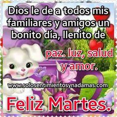 Dios le de a todos mis familiares y amigos un bonito día, llenito de paz, salud y amor. Santa, Hollywood, World, Good Day Quotes, Domingo, Happy Tuesday, Bonjour