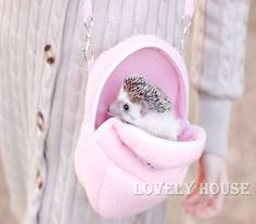 US $6.58 New in Pet Supplies, Small Animal Supplies, Beds, Hammocks & Nesters