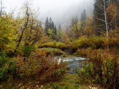 Viewing the fall colors in Spearfish Canyon, South Dakota