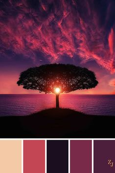 ZJ Colour Palette 612 #colourpalette #colourinspiration