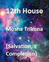 Read about the house of a horoscope: it means salvation, completion, foreign lands, divine spirituality and much more. What do planets to in the house Spiritual People, Emotional Strength, Vedic Astrology, Father Figure, Under Pressure, Past Life, Self Confidence, Nervous System, Horoscope