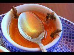 كيف تميز بين العسل الطبيعي الحر والعسل الصناعي المغشوش بسهولة - YouTube