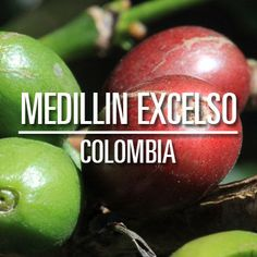 Medellin Excelso Colombia - Colombo Coffee & Tea Co.