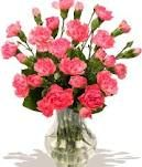 Carnations are pretty too and smell good! :)