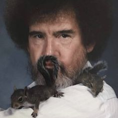 'Bob Ross With Squirrel' Poster by Amybur Dankest Memes, Funny Memes, Hilarious, Happy Little Trees, Bob Ross Paintings, Fandom, Wholesome Memes, My Guy, Reaction Pictures