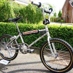 My real BMX bike. Diamond Back Silver Streak Cycling Art, Cycling Bikes, Cycling Quotes, Cycling Jerseys, Best Mountain Bikes, Mountain Biking, Diamondback Bmx, Vintage Bmx Bikes, Retro Bikes