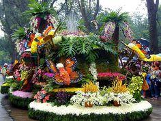 Panagbenga, Flower Festival in Baguio, Philippines. World Festival, Art Festival, Glastonbury Music Festival, Baguio City, Filipino Culture, Flower Festival, Philippines Travel, Baguio Philippines, Festivals Around The World