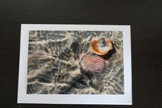 Diy Cards, Easy Diy, Greeting Cards, Cute, Shop, Painting, Etsy, Homemade Cards, Kawaii