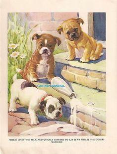 English Bulldog Puppies 1930s Childrens Vintage Art Print AE Kennedy Cutest | eBay