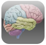 Resource (Executive Functioning) - Apps to Promote Flexible Thinking