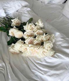 Flower Aesthetic, White Aesthetic, Aesthetic Photo, White Roses, White Flowers, Everything Is Possible, Flowers Nature, Rose Design, Flower Wallpaper