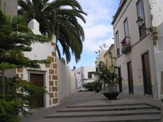 ️Get to know what to do and see in Telde, Gran Canaria. Canario, Canary Islands, Street View, Travel, Wanderlust, Windows, Continents, Palms, Places To Visit