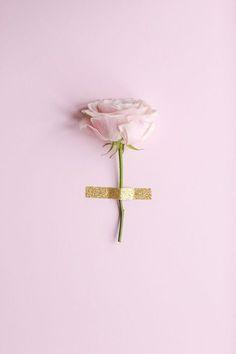 aesthetic, alternative, flower, minimal, minimalism, pastel, pink, random stuff, rose