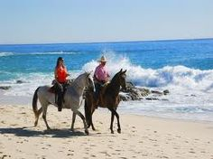 i love horse back riding, but i really want to go horse back riding on the beach. (on todo list)