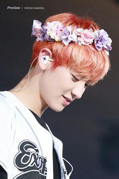 160729 #Chanyeol #EXO #EXOrDIUMinSeoul