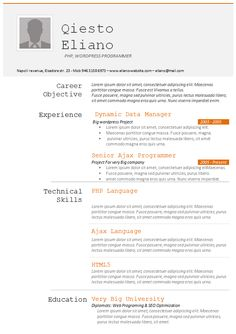 This Image Presents The Programmer Resume Template Do You Know