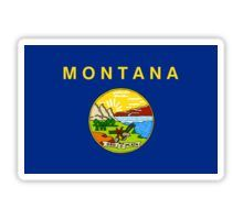Montana State Flag Stickers