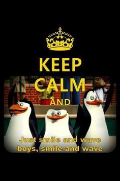 ♥ penguins of madagascar (skipper)