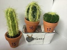 These crochet cactus measures approximately from 13cm to 23cm (5 1/4 to 9) tall from the top of the plant to the bottom of its terracotta pot. The pot is about 3 in diameter. Made of yarn this plant will last forever with no watering or sunshine required, and it will never prick