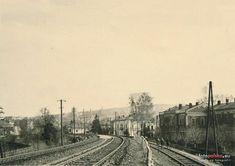 Stacja_Towarowa_Przemysl_Zasanie Railroad Tracks, Train Tracks