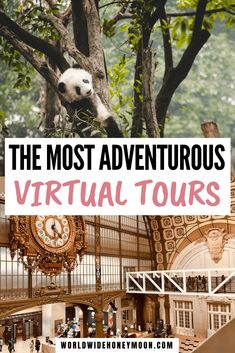 We've searched high and low for the best virtual tours online including the best online museum tours, wildlife spotting, and even natural wonders! Virtual Museum Tours, Virtual Tour, Virtual Art, Virtual Field Trips, Virtual Travel, Online Travel, Travel Couple, World Heritage Sites, Travel Guides