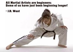 A martial artists' journey