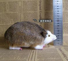 49.00$  Buy here - http://alizey.worldwells.pw/go.php?t=32737433578 - simulation Hedgehog 20x9x10cm model,polyethylene&fur lovely hedgehog handicraft toy decoration Xmas gift b3822