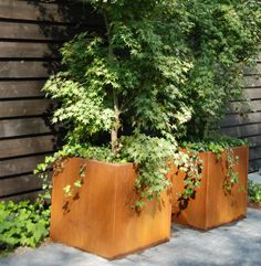 · Thick Corten Steel Planter · Naturally Weathers to Develop a Protective Rust · Incredibly Strong and Durable · Pre-drilled Drainage Holes · Custom and Bespoke Sizes Available · Pre-weathering service available · No Minimum Order x x x x x x x x. Container Flowers, Container Plants, Container Gardening, Garden Planters, Planter Pots, Steel Planter, Planter Ideas, Landscape Design, Garden Design