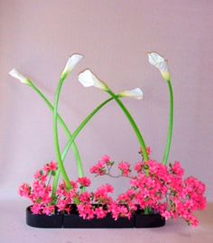 Ikebana Simplicity, only 3 elements: white calla lilies, pink azaleas and black tray Curved lines, no straight lines Only 5 upright flowers grouped as 3 + 2, creating negative space between the vertical elements, the stems Negative space between the horizontal elements: calla lilies at the top, azaleas and tray at the bottom