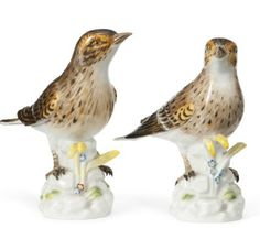 Pair of Meissen Models of Thrushes,   http://www.christies.com/lotfinder/sculptures-statues-figures/a-pair-of-meissen-models-of-thrushes-5588256-details.aspx?from=salesummary=10=5588256=e4d36863-1d8e-4b4f-849d-c21aee8ad56d=12