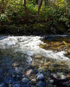 Oleny Creek