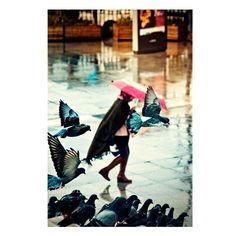 Rain Photography Photograph Umbrella Pink umbrella   by gonulk #Photography #Etsy  #walldecor #HomeDecor #HomeDecorating #decorations #decor #Art #wallart #prints