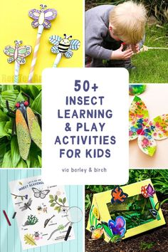 A collection of our very favorite educational insect learning resources, play activities, and bug crafts to help kids of all ages discover the joy of insects!   via barley & birch Educational Activities For Preschoolers, Hands On Activities, Toddler Activities, Activities For Kids, Crafts For Kids, Fun Learning, Learning Resources, Butterfly Life Cycle, National Geographic Kids