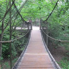 https://flic.kr/p/EDNbMD | Hanging wooden bridge | At the Pittsburgh Zoo in Pittsburgh, PA.